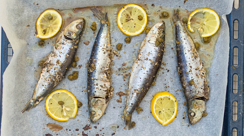 De griekse keuken de wereld op je bord